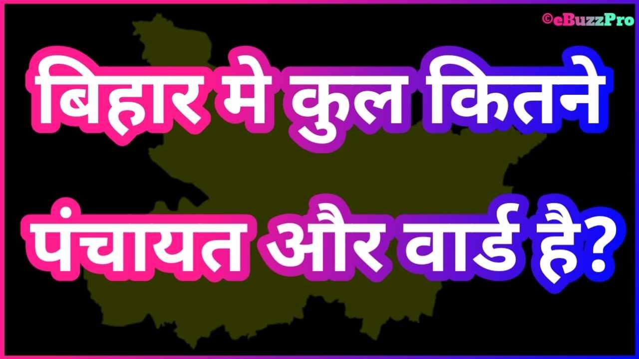 Bihar Me Kitne Panchayat Hai - बिहार में कुल कितने पंचायत है
